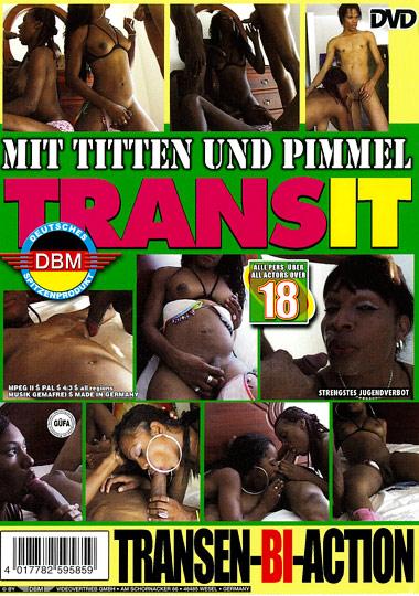 Transit: Transen Bi Action (2010)