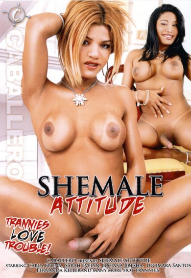 Shemale Attitude (2013)
