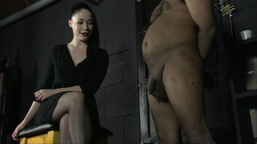 Ridiculous Penis Female Domination