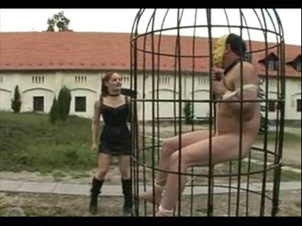Femdom 1606132 Female Domination