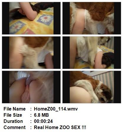 http://ist2-1.filesor.com/pimpandhost.com/5/3/1/2/53125/1/k/n/u/1knuf/HomeZ00_114.wmv.jpg