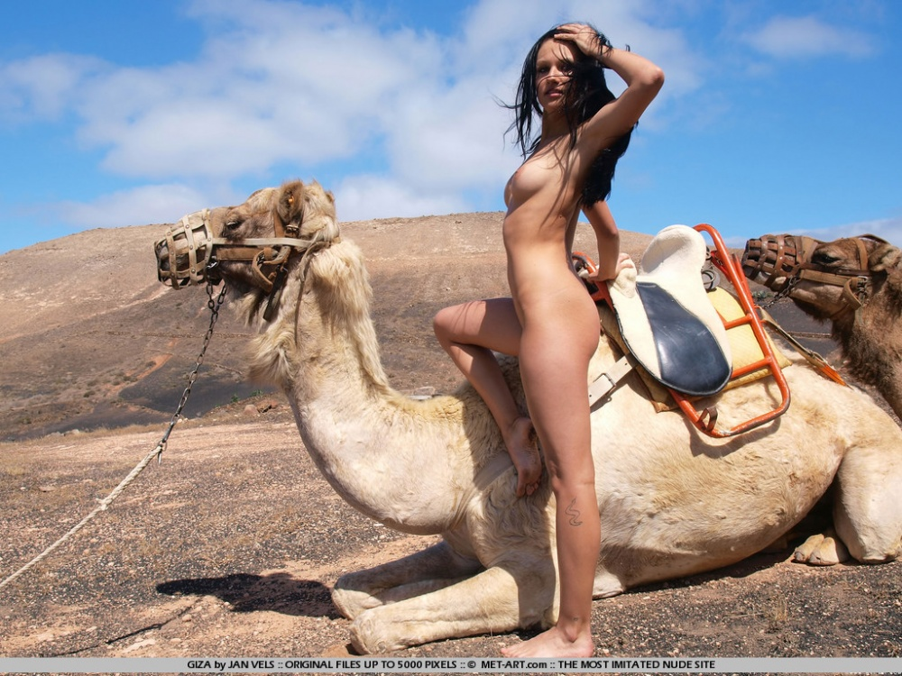 naked woman riding a camel