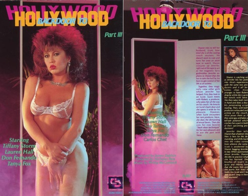 Backdoor to hollywood 2 1986 6