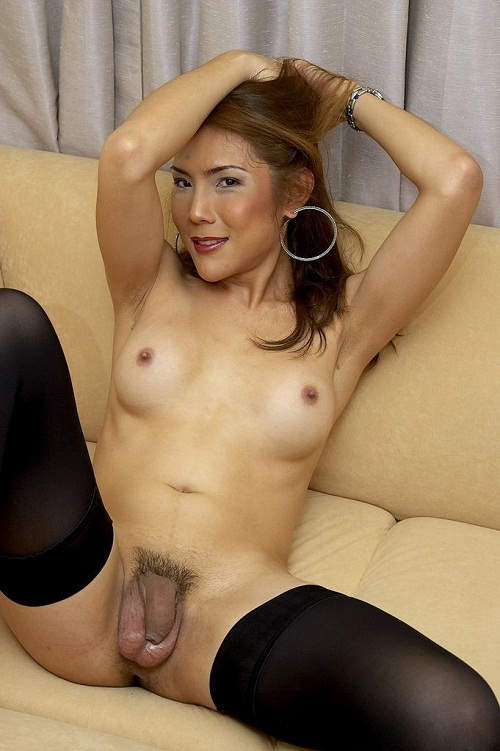 Asian and latina ladyboy