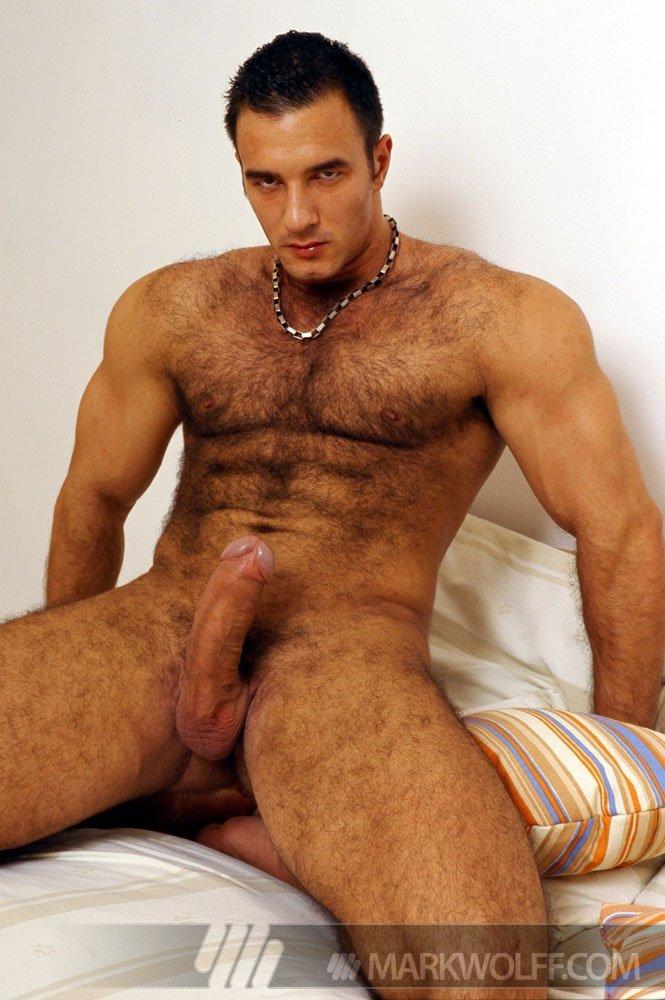 Stefano gay