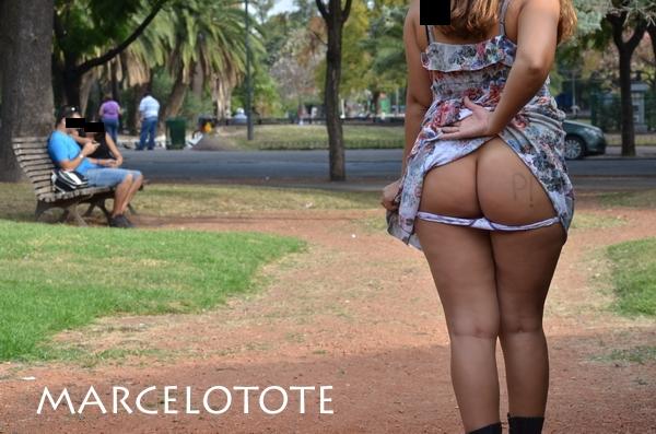 marcelotote