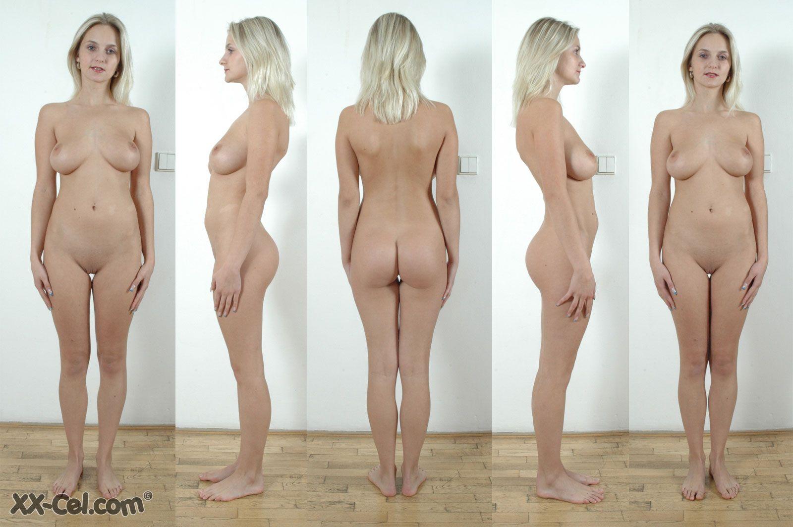 Nude Female Anatomy Photographs